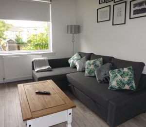 Anderson Apartment - Motherwell (5)